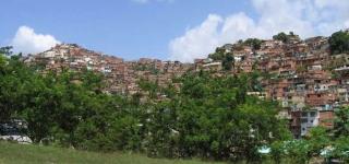 barrios1.jpg